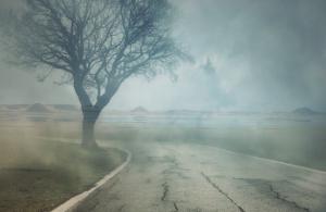 reformist-mist